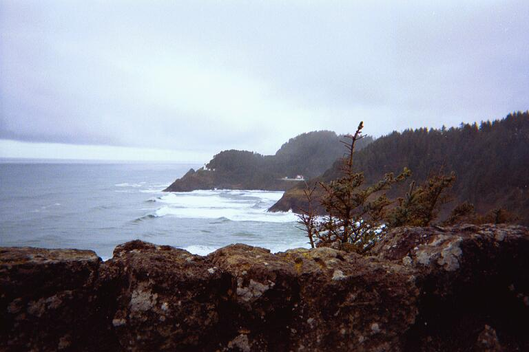 coast_heceta_head.jpg